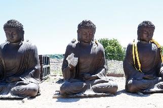佛像來加拿大之路Buddha statues road to Canada